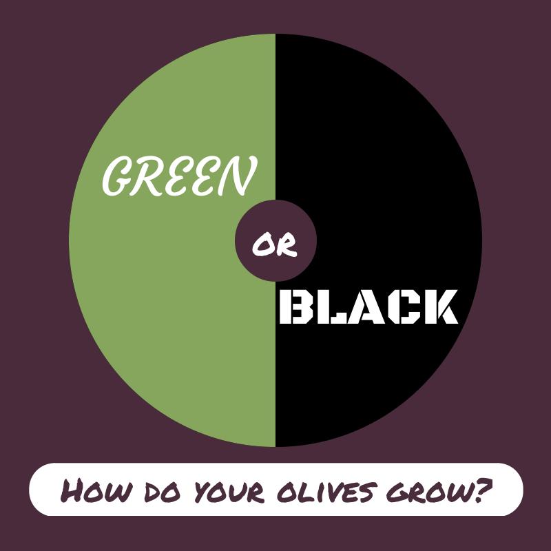 Green or black olive