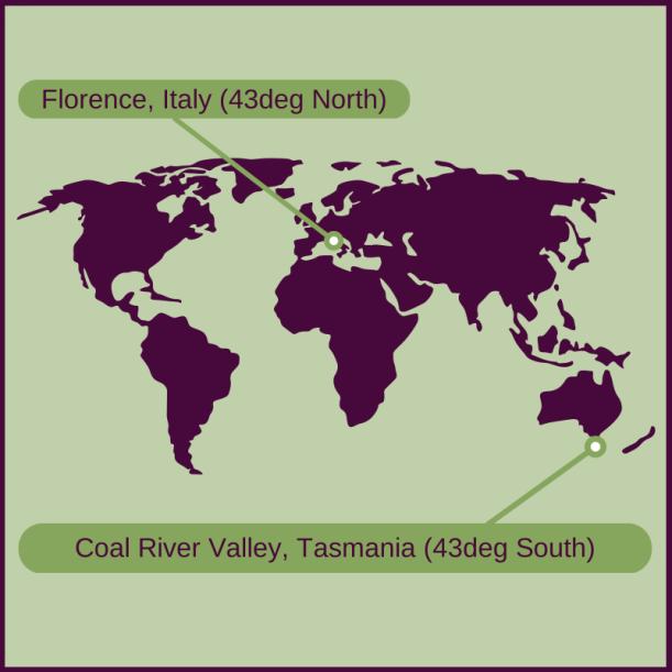 Italy and Tasmania map