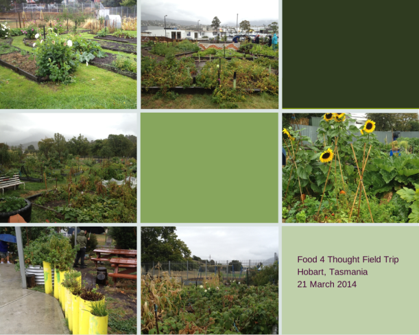 Photos taken in community gardens, Hobart, Tasmania