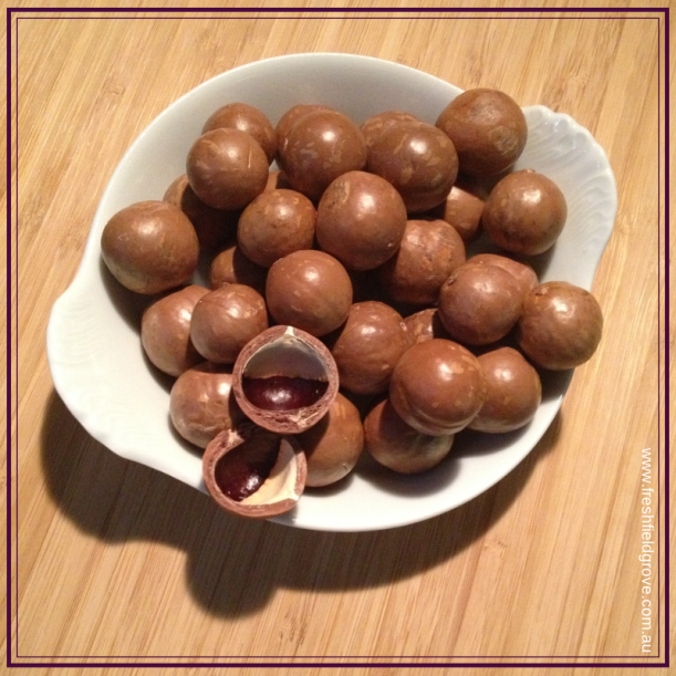 Macadamia nuts or maltesers?
