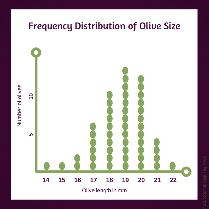Distribution graph picual olive size