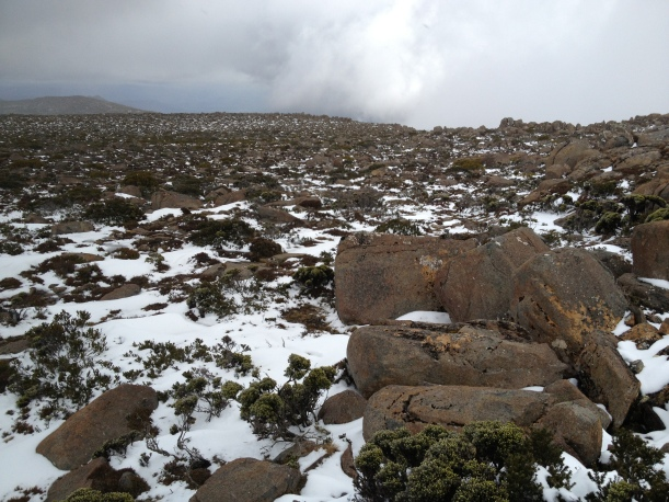 Snow on the top of Mount Wellington, Tasmania.
