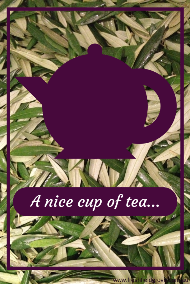 A nice cup of olive leaf tea