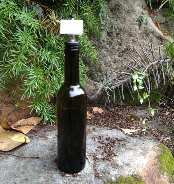 olive oil evoo australian made bottle
