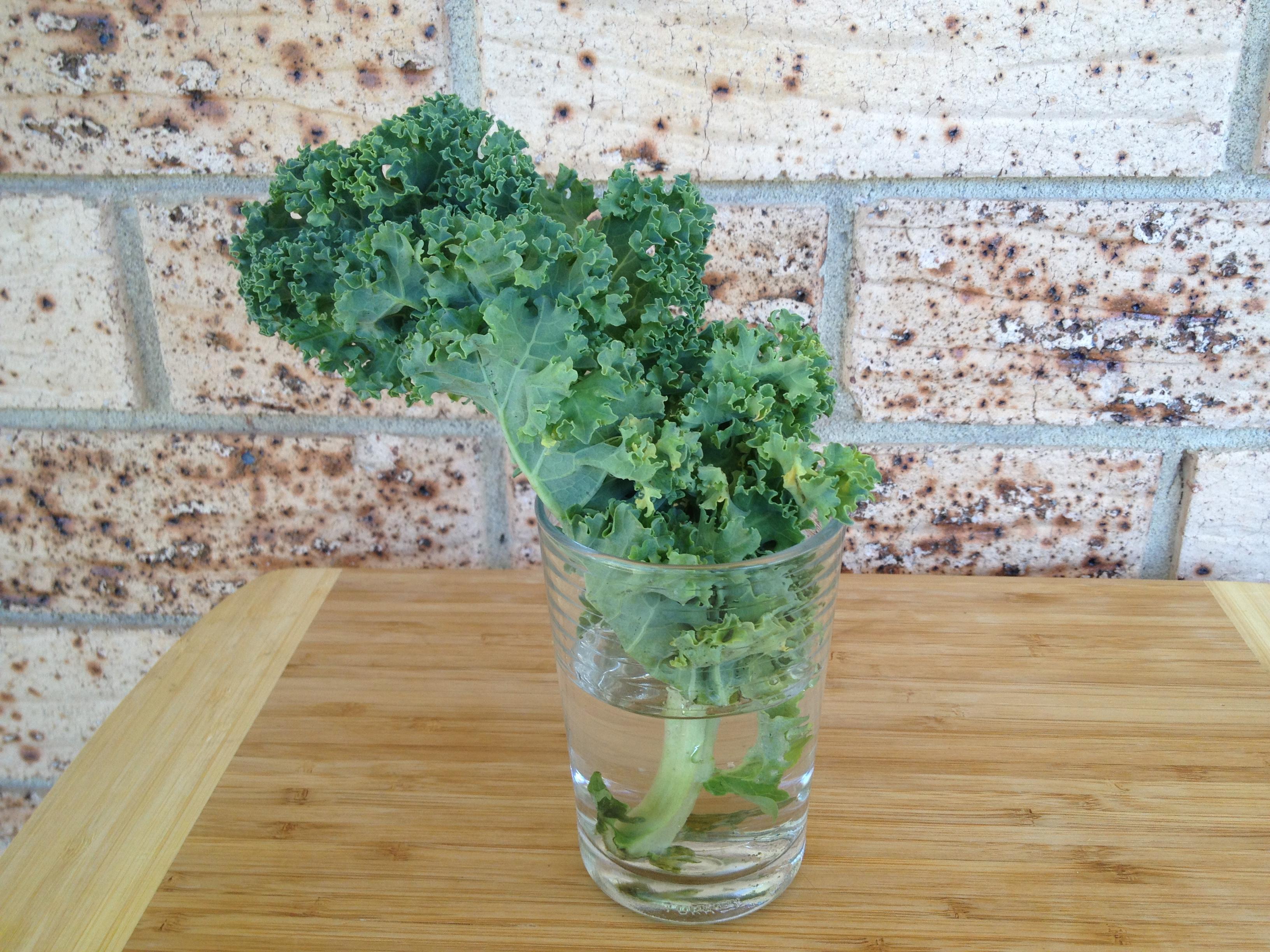 keep kale longer water