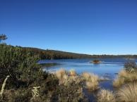 Bronte Lagoon