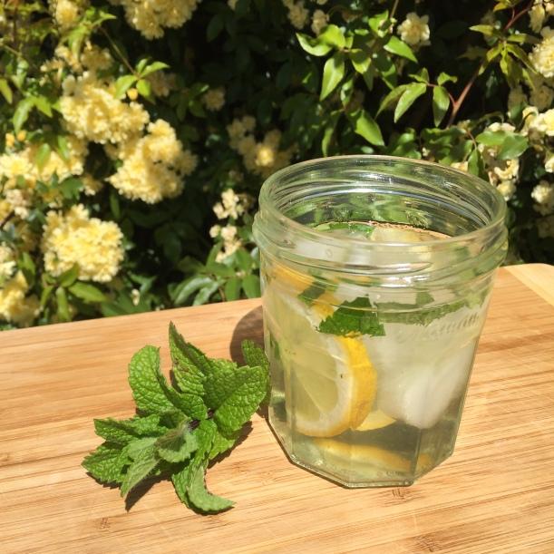 iced tea olive leaf lemon mint tasmania